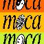 Biểu tượng logo của Museum of Crypto Art