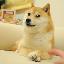 Biểu tượng logo của The Doge NFT