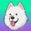 Biểu tượng logo của Samoyedcoin