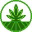 Biểu tượng logo của Strains Finance
