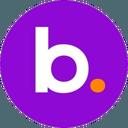 Biểu tượng logo của BNS Token